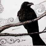 crow drawing edited sm